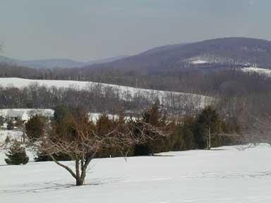 The Gallows Run Watershed lies mainly in Nockamixon Township.